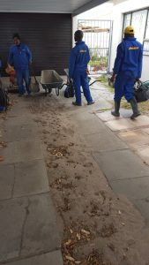 Image of Fish Hoek 1 Paving